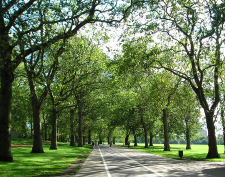 Lover's Walk in Hyde Park, London